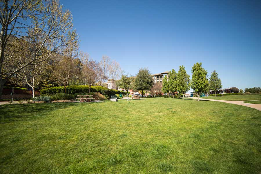 Spacious grounds at Alpine Park Apartments