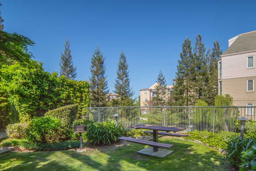 Picnic table with tree-lined view at Alpine Park Apartments